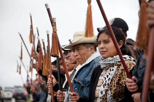 Indigenous 510x340